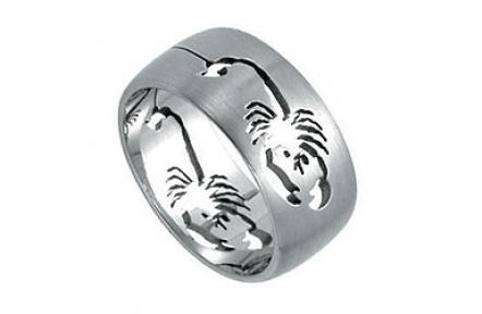Prsten z chirurgické oceli RSSO261